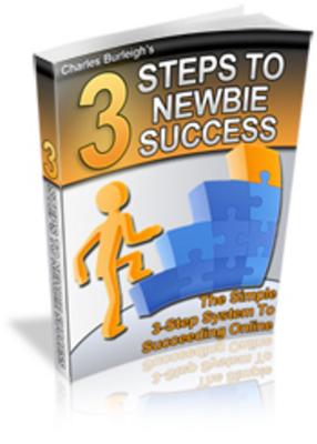 Product picture 3 Steps To Newbie Success - Improve Online Profits!